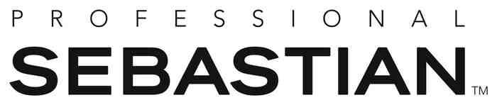 Sebastian professional_logo